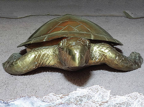 Bronze Turtle 2 by Bruce Iorio