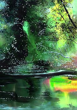 Brook by Anil Nene