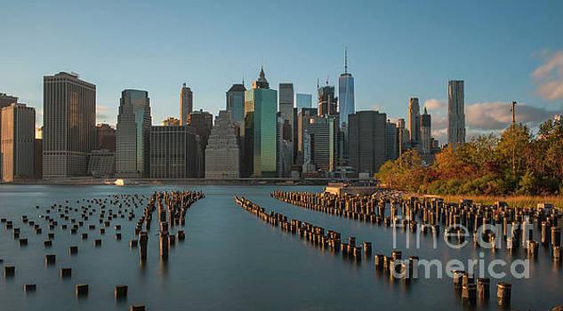 Roman Gomez - Brooklyn Bridge Park nyc