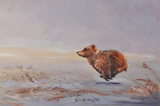 Brown Bear Cub - Playing Catch Up by Louise Charles-Saarikoski