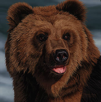 Brown Bear by Danny Day