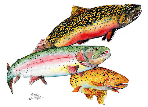 Brown, Bow, Brookie by Joel DeJong