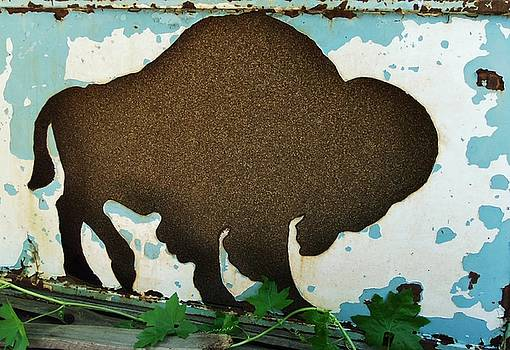Brown Buffalo by Larry Campbell
