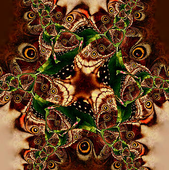 Brown Butterfly Collage by Irma BACKELANT GALLERIES
