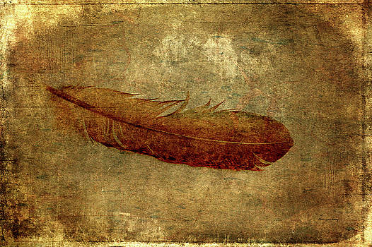 Brown Feather by Randi Grace Nilsberg