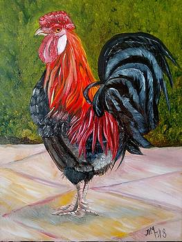 Brown Leghorn Rooster by Joan Mansson