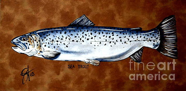 Brown Sea Trout  by Jackie Carpenter