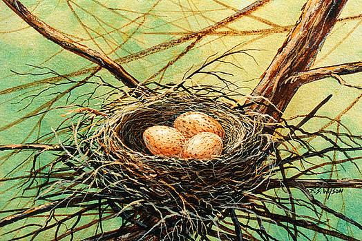 Frank Wilson - Brown Speckled Eggs