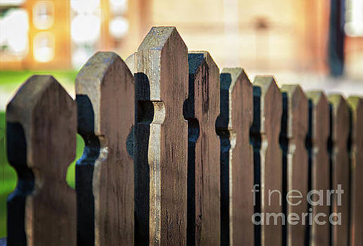 Sophie McAulay - Brown wooden fence