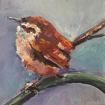 Brown Wren by Karen Ahuja