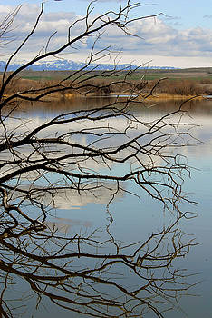 Bruneau Dunes Lake by Michelle Halsey