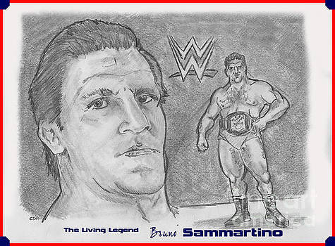 Bruno Sammartino The Living Legend by Chris  DelVecchio