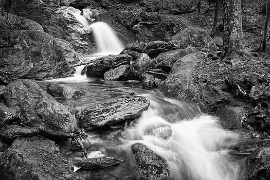 Brush Brook by Dave Schmidt