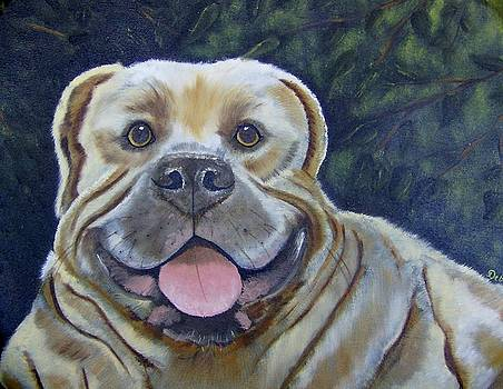 Brutus the Bulldog by Debra Campbell