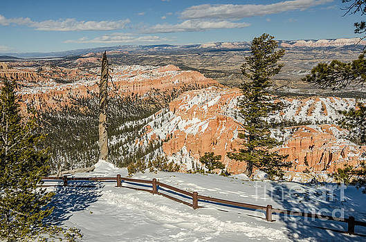 Bryce Amphitheater from Bryce Point by Sue Smith