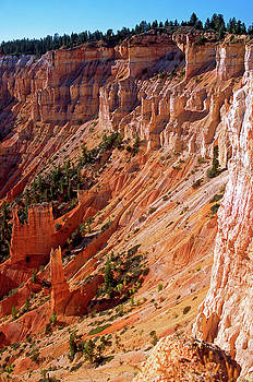 Bryce Amphitheater  by Sally Weigand