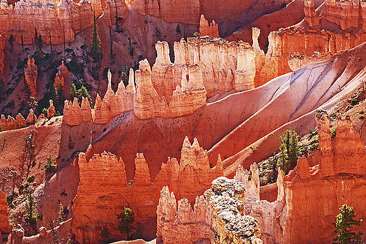 Bryce Canyon Castles by David Frankel