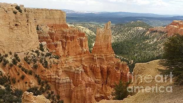 Bryce Canyon by Fortunate Findings Shirley Dickerson