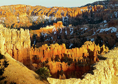 Bryce Canyon Hoodoos evening by Amelia Racca