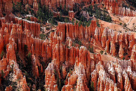 Susanne Van Hulst - Bryce Canyon in Utah