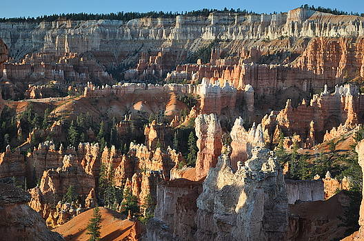 Bryce Canyon National Park by Jeff Moose