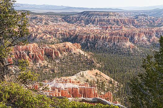 James BO Insogna - Bryce Canyon National Park Views