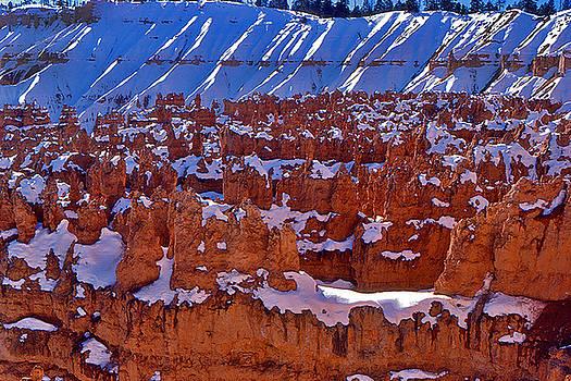 Bryce Canyon by Reed Rahn