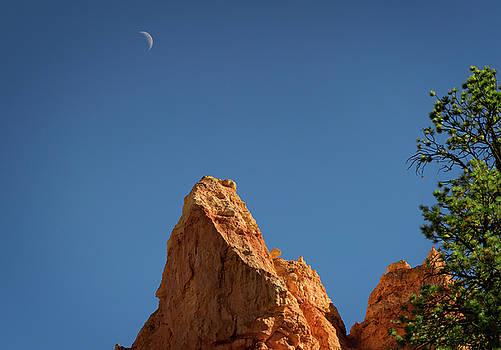 Ricky Barnard - Bryce Canyon V