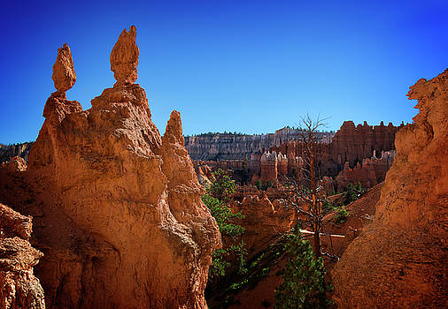 Ricky Barnard - Bryce Canyon VII