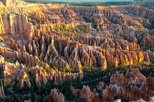 Bryce Point at Sunrise by Robert Brusca