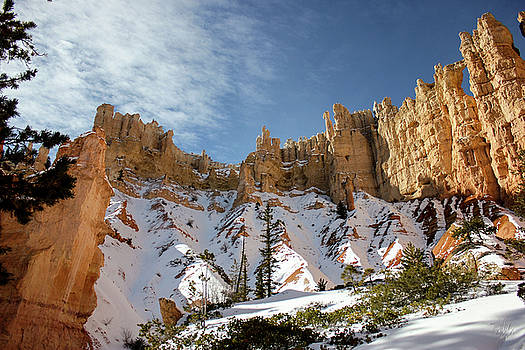 Bryce Towers by Jessica Tabora
