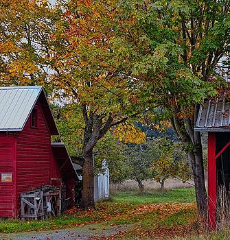 B'tween Barn and Shed by Rick Lawler