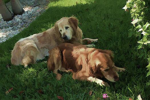 Bubba and Casey by Carol Kinkead