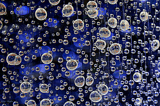 Bubble Baubles by Greg Taylor