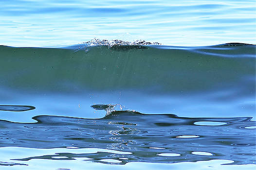 Bubble Wave by Stacie Fernandes