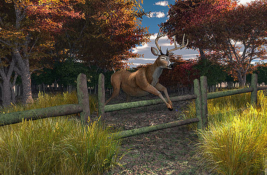 Buck Jumping by Mary Almond