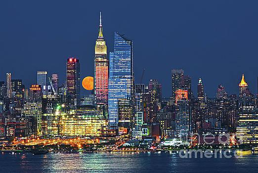 Regina Geoghan - Buck Moonrise NYC