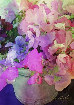 James Temple - Bucket Of Peas Digital Watercolor