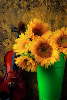Bucket Of Sunflowers With Violin by Garry Gay