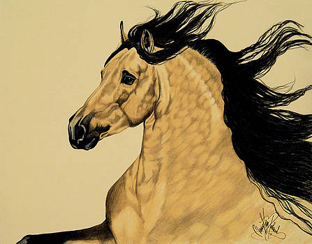 Buckskin Andalusian - Dream Horse Series #3300 by Cheryl Poland