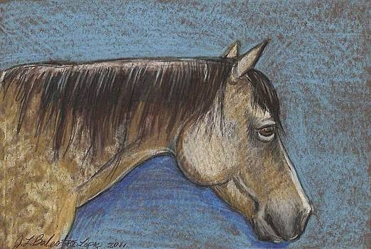 Buckskin Mare by Jamey Balester