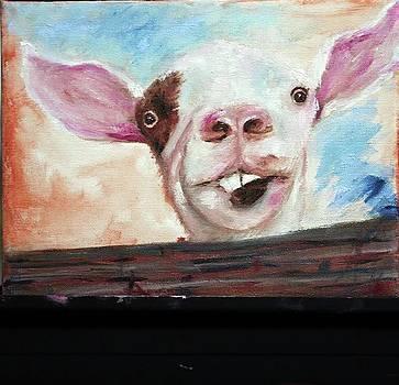 Bucktooth'd Goat part of Barnyard Series by Debbie Frame Weibler