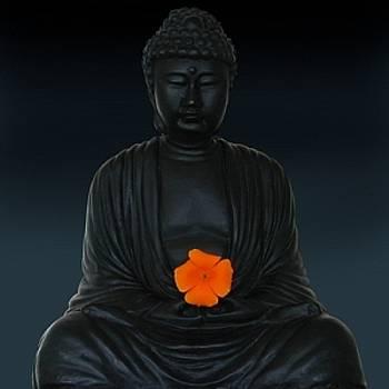 Budda Blossom by Richard Nodine