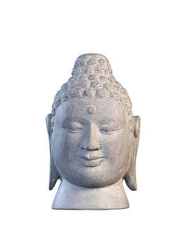 Buddha head - Borobudur  by Terrell Kaucher