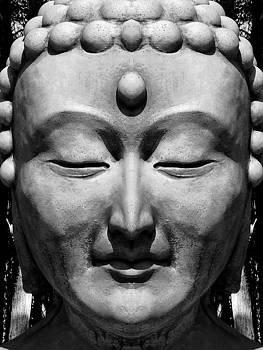 Buddha by Scott Hill