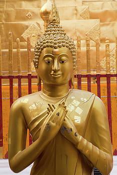 Buddha statue by Emily M Wilson