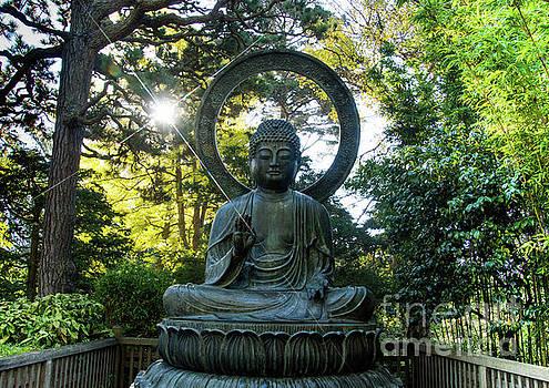 Buddha by Tina Hailey