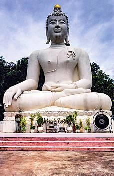 Steve Harrington - Buddhist Shrine - Thailand