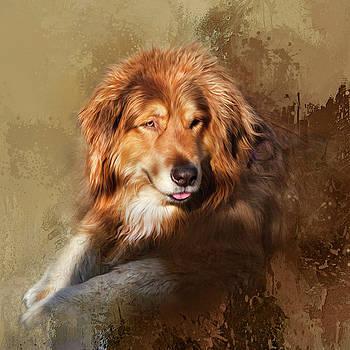 Buddy by Theresa Tahara