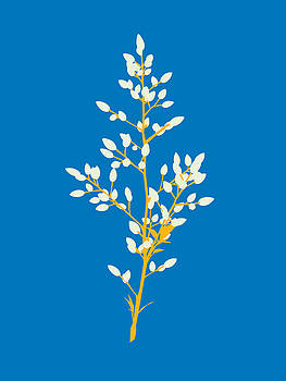 Buds - Blue by David Lange